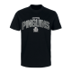 Fischtown Pinguins - T-Shirt - black - PINGUINS grey - Gr. S