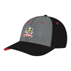 Fischtown Pinguins - CAP - black-grey - Logo